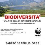 Sostenibilità ambientale e biodiversità al Villaggio dei Ragazzi